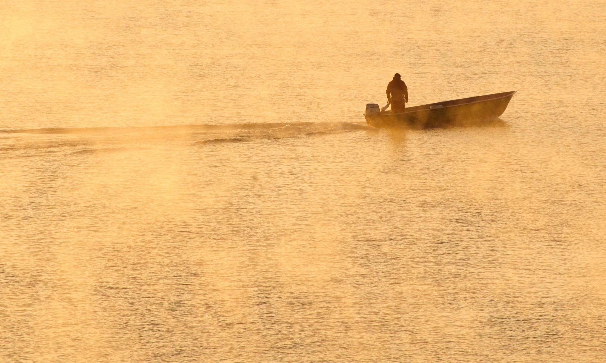 Ferienwohnungen Zum Landesteg am Starnberger See